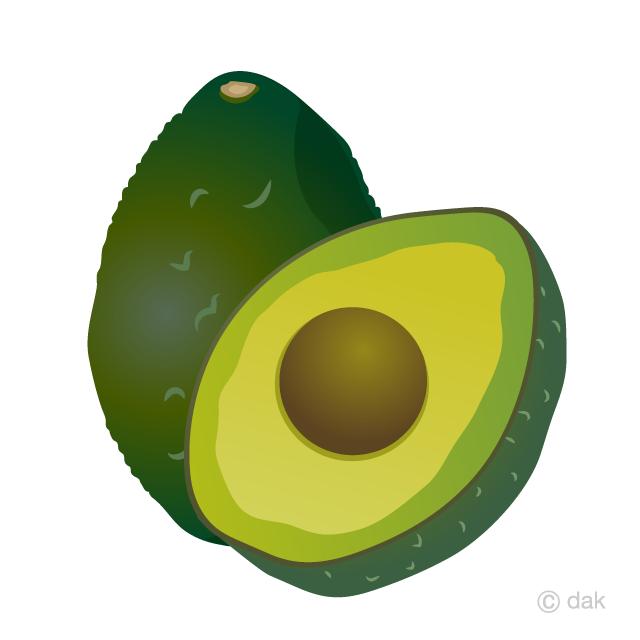 Free picture illustoon . Avocado clipart avacado