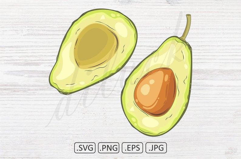 Avocado clipart avacado. Fruit cut in half