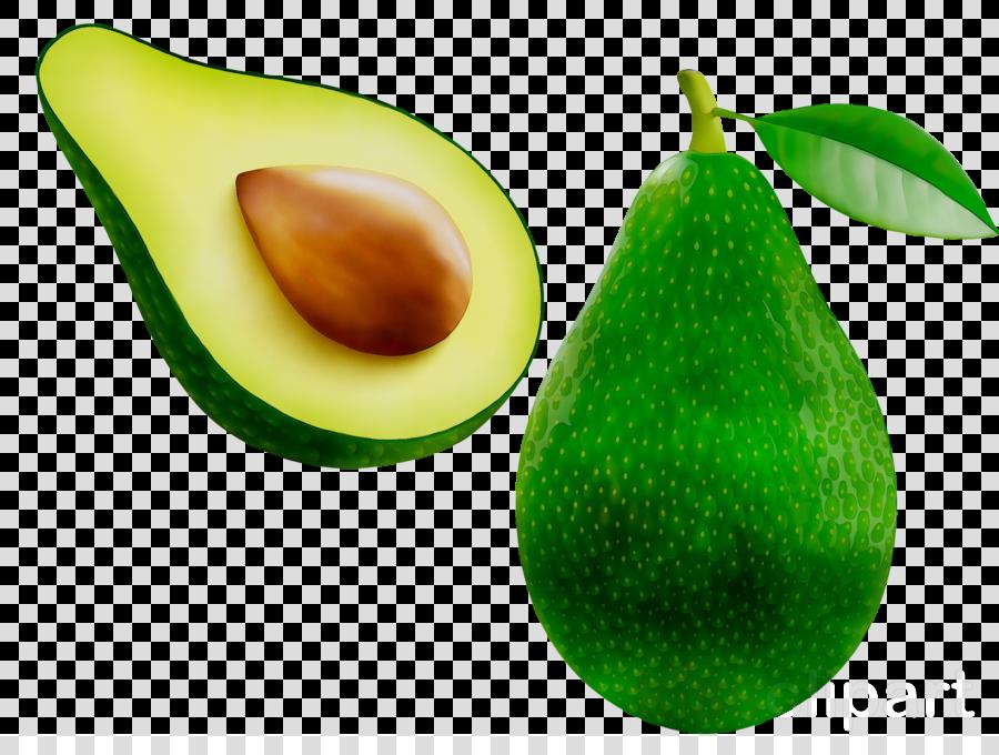 Tree pear transparent clip. Avocado clipart avocado fruit