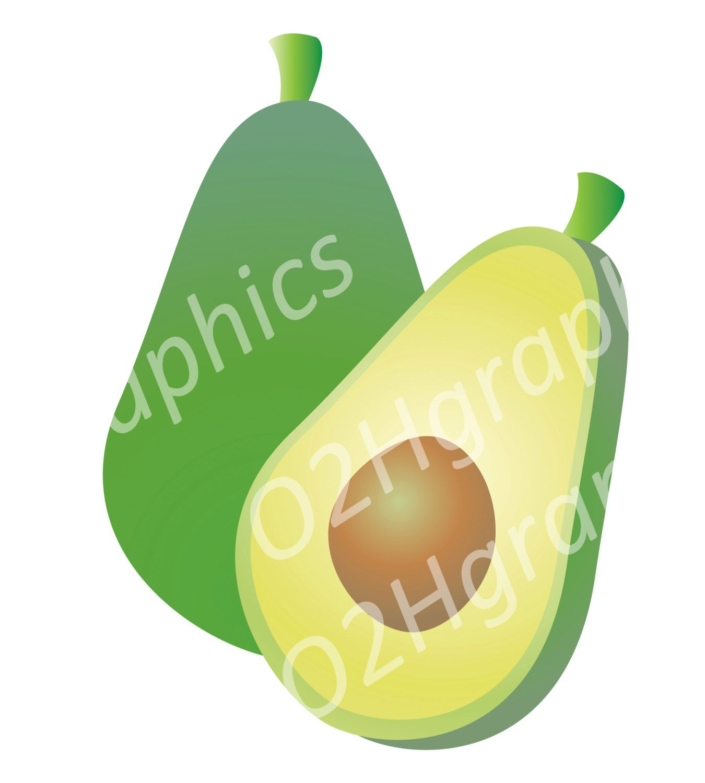 Vector stock image png. Avocado clipart avocado fruit