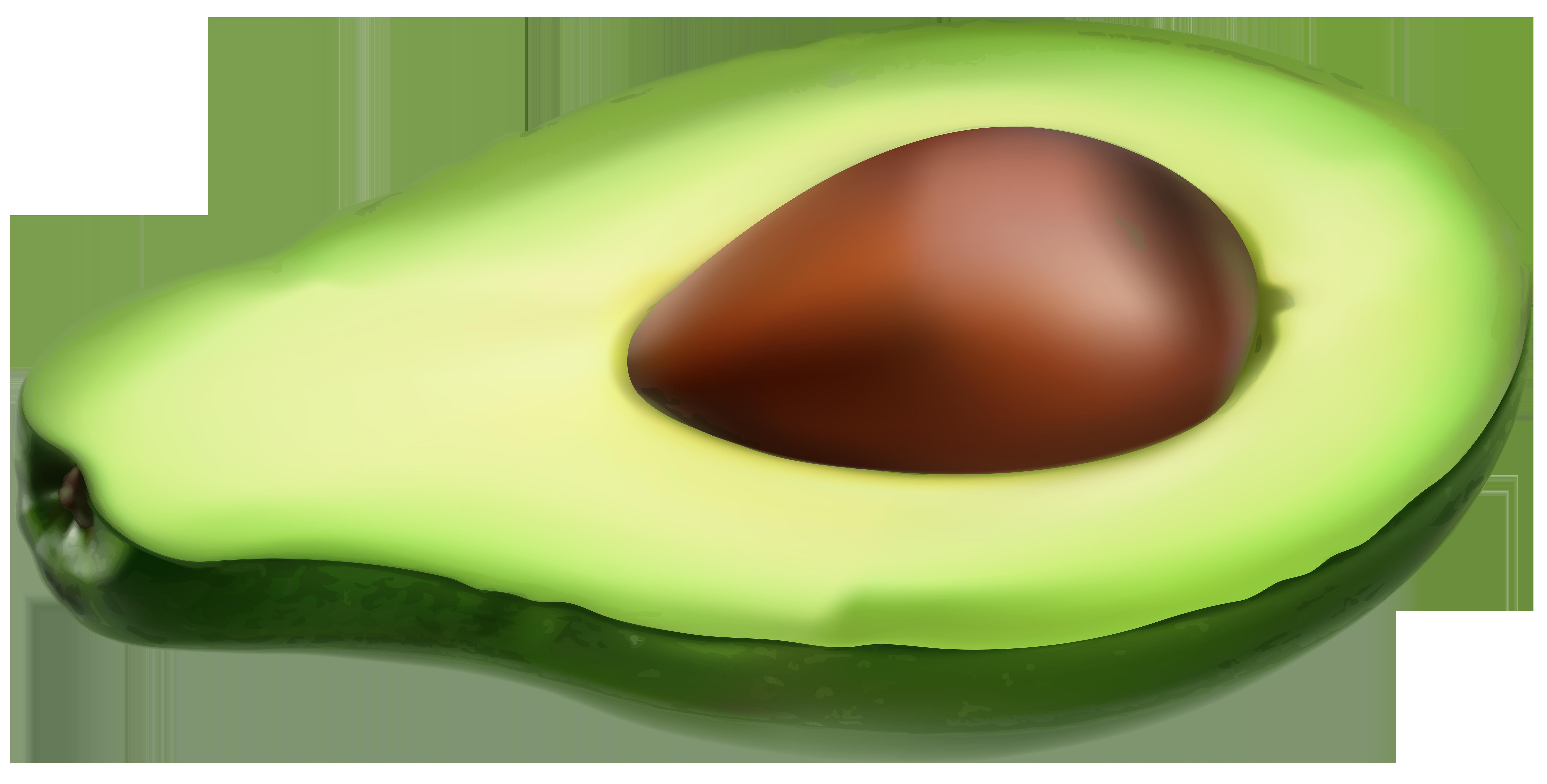 Png clip art image. Avocado clipart avocado half