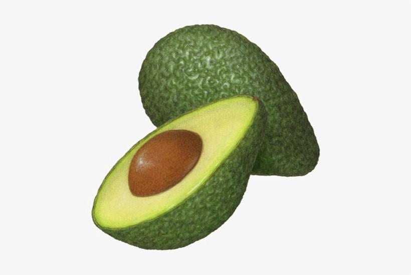 Avocado clipart avocado half. Png illustration free