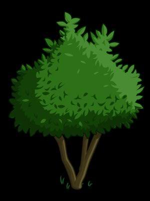 Avocado clipart avocado tree. Farmville wiki fandom powered