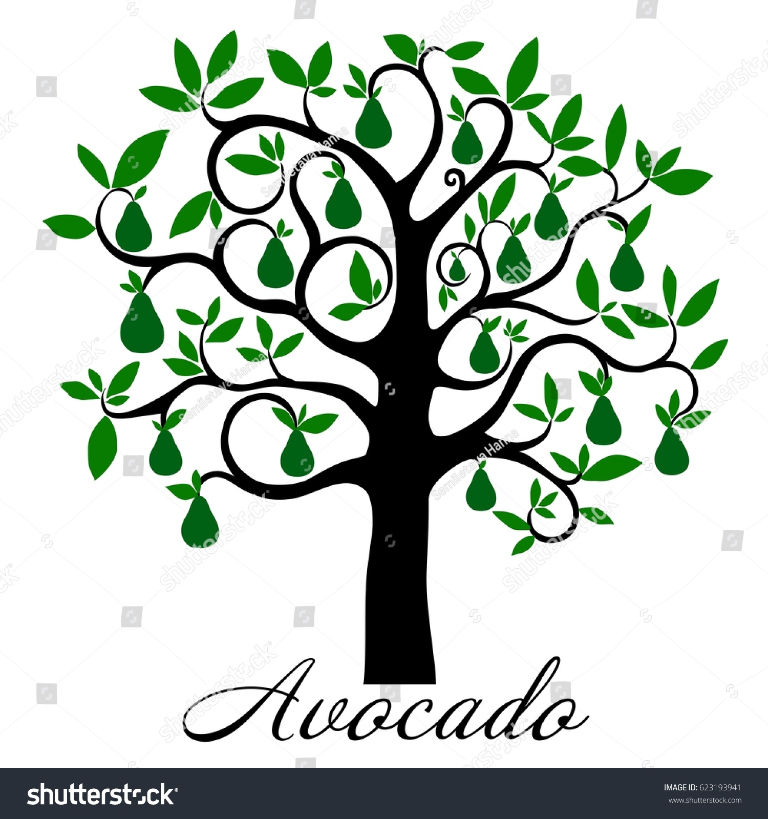 Station . Avocado clipart avocado tree