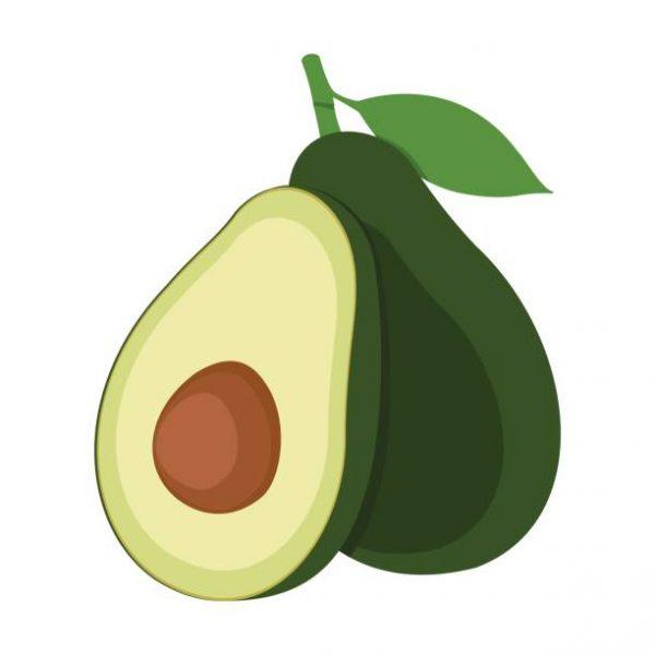 Avocado clipart cartoon. Nice clip art