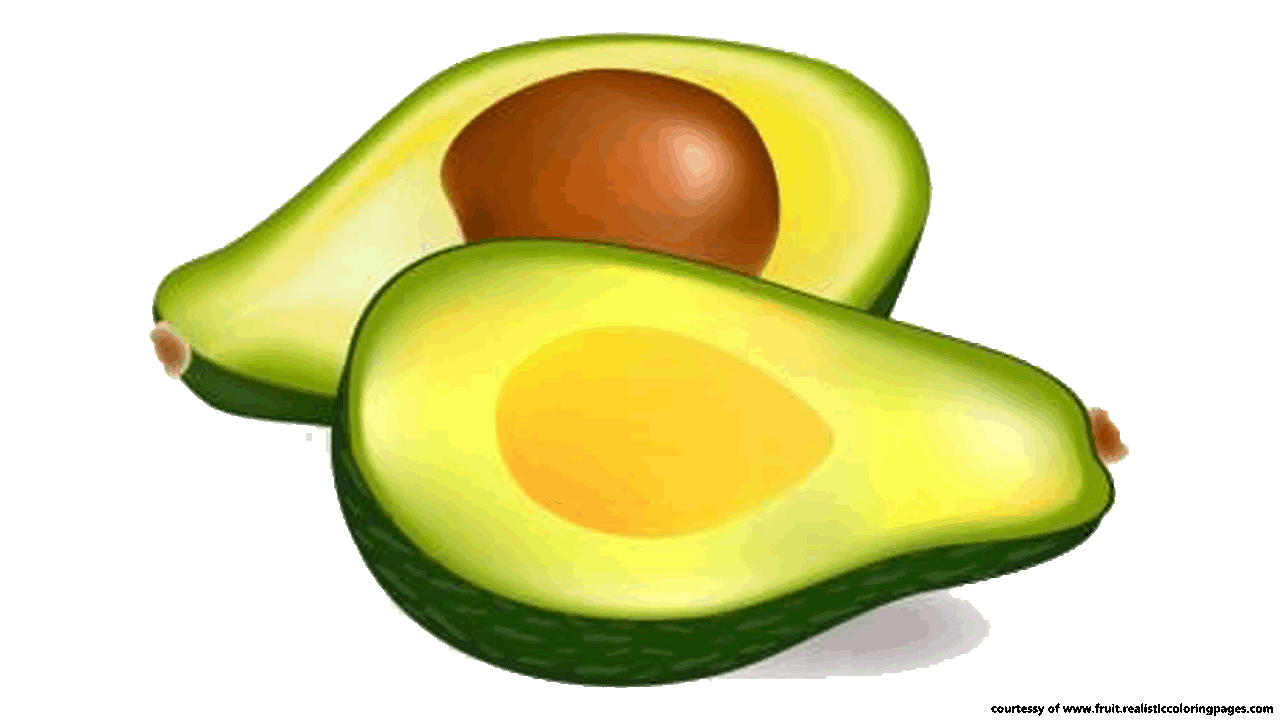 Avocado png images free. Fruits clipart transparent background