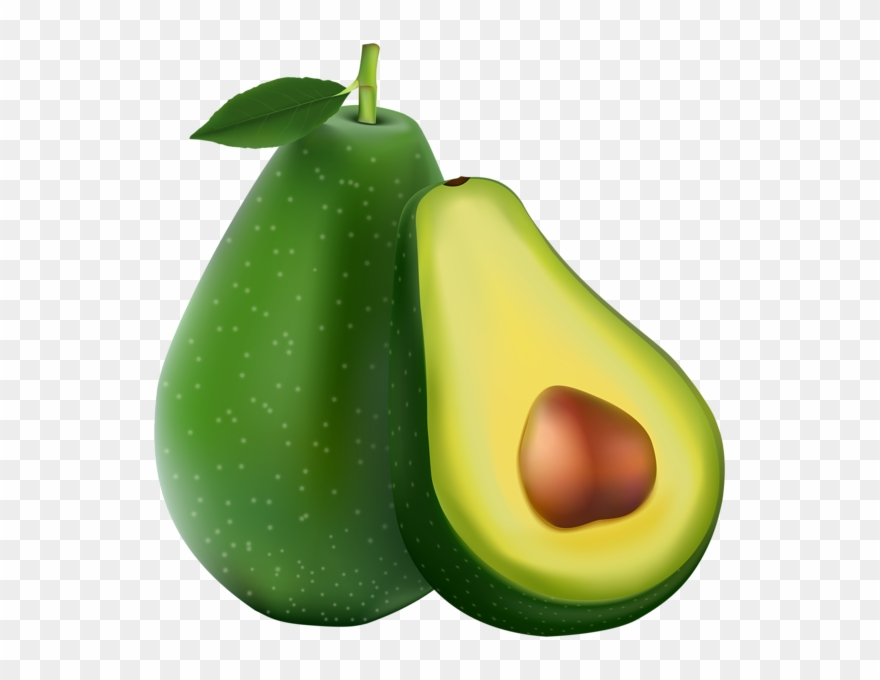 Avocado clipart clip art. Free download pear still