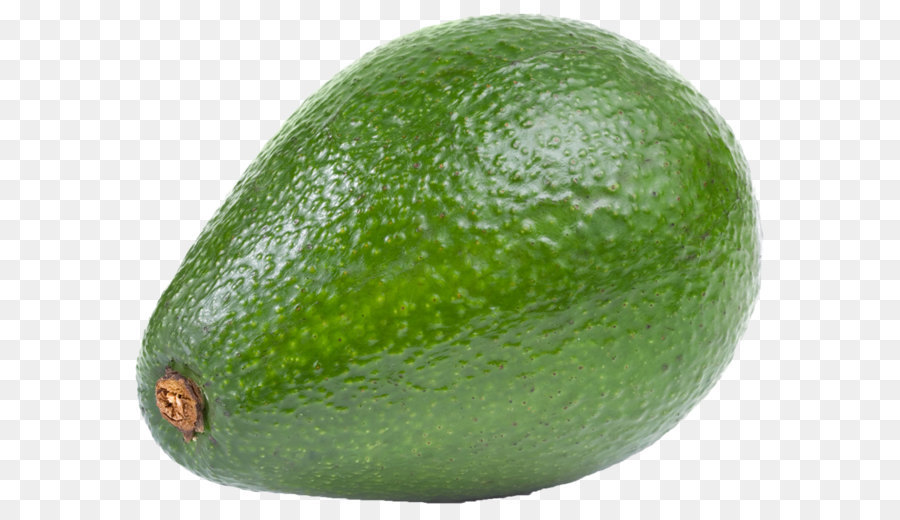 Hass large png download. Avocado clipart clip art