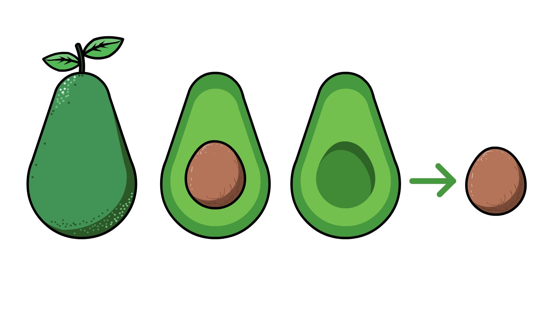 Fruit Tree Clipart Fruit Tree Isolated 25915852 Jpg   Tree drawing, Fruit  trees, Apple tree drawing
