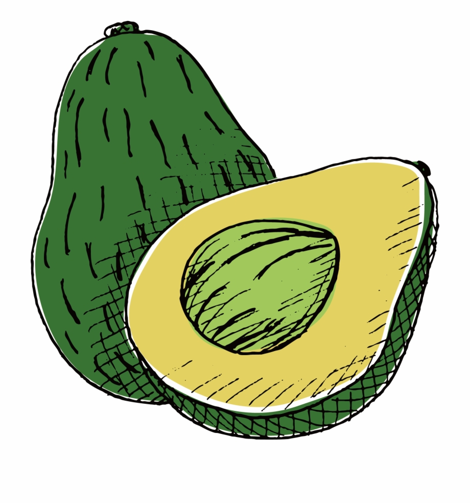 Drawing png transparent . Avocado clipart draw