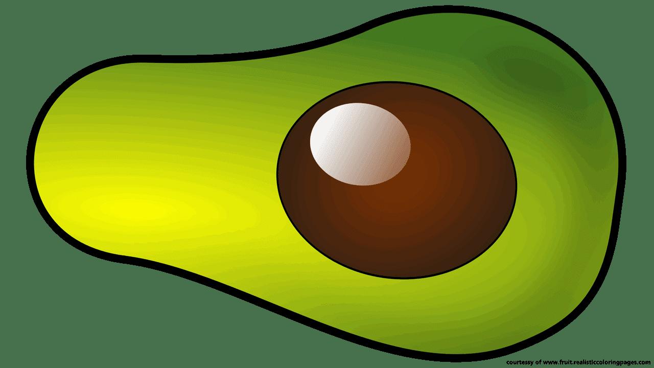 great avocado free. Fruit clipart green fruit