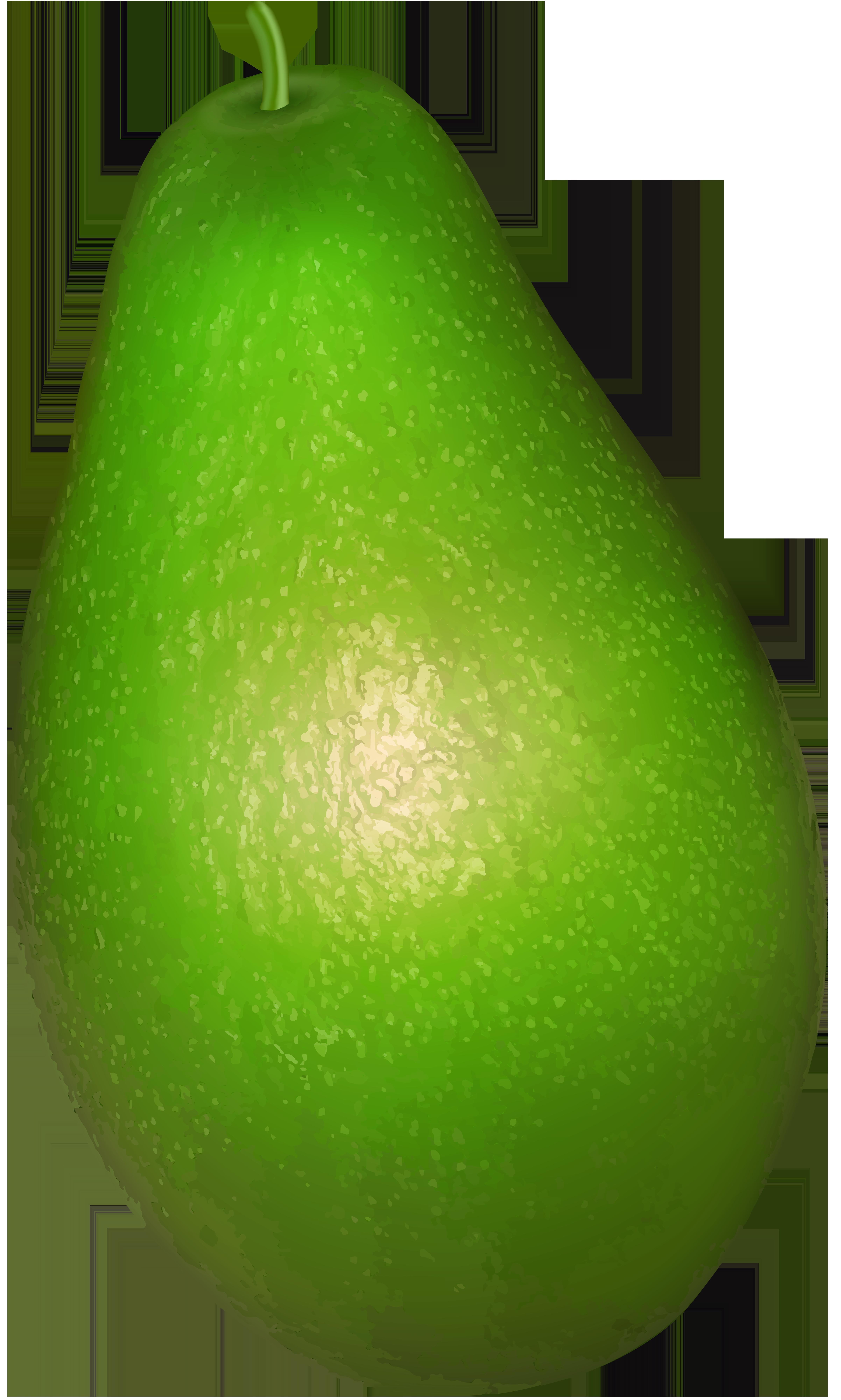 Avocado transparent png clip. Fruit clipart green fruit