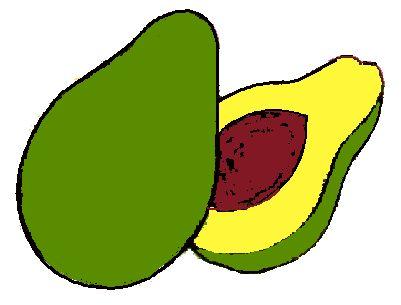 best educa o. Avocado clipart kid