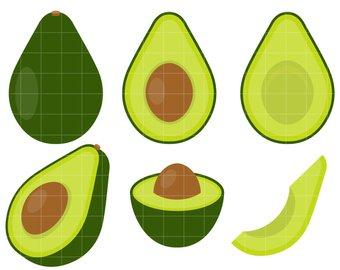 Avocado clipart line drawing. Etsy set clip art