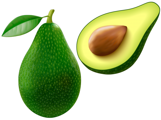 Avocado clipart line drawing. Gangster cliparts free download