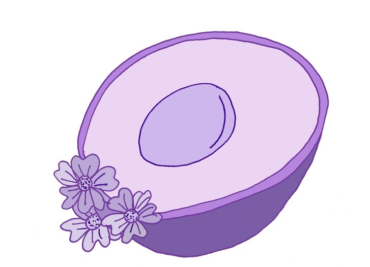 Beyond the proposal new. Avocado clipart purple