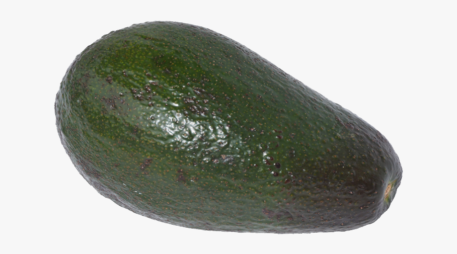 Avocado zucchini free . Cabbage clipart single vegetable
