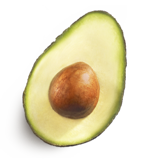 Png image without web. Avocado clipart transparent background