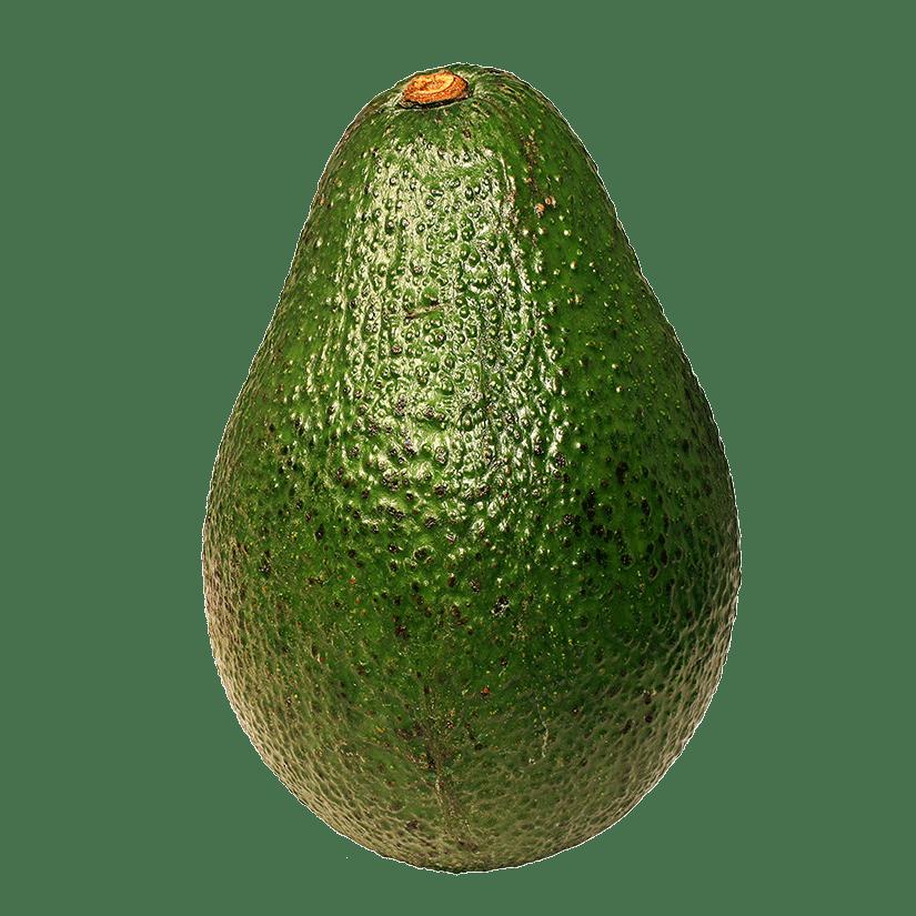 Png stickpng. Avocado clipart transparent background