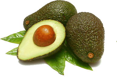 Avocado clipart transparent background. Sliced png stickpng food
