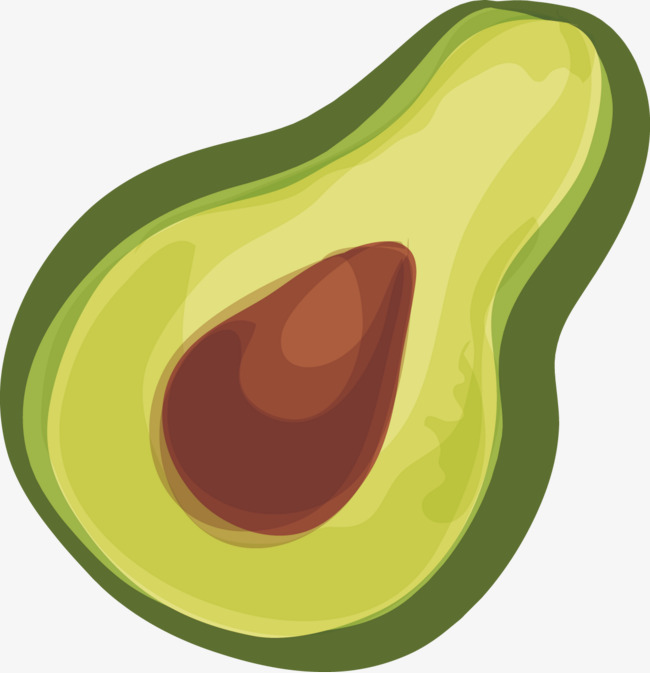 Avocado clipart vector. Decorative elements decoration png