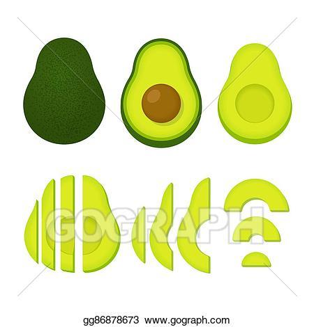 Art whole and cut. Avocado clipart vector