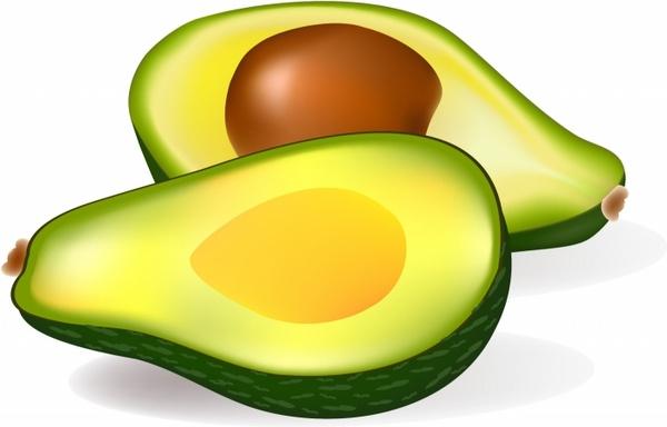 Two half avocados free. Avocado clipart vector