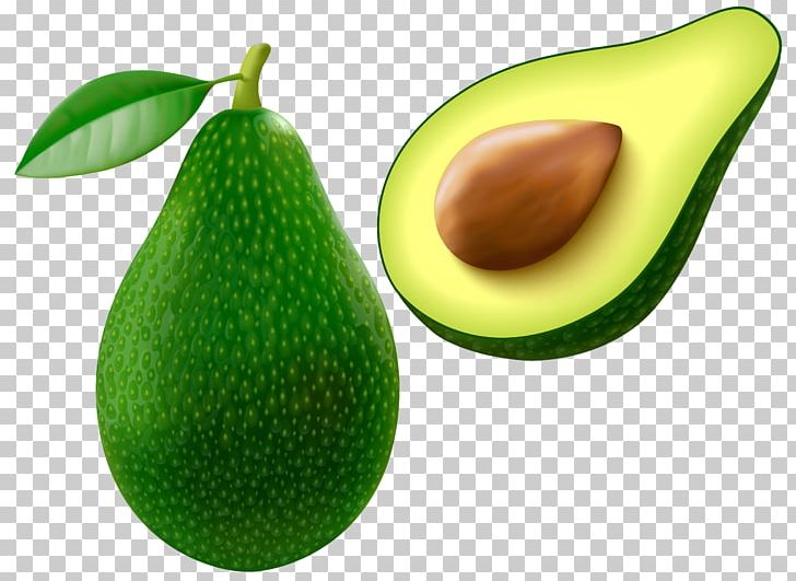 Avocado clipart vegetable. Png cliparts