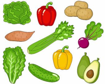 Avocado clipart vegetable. Vegetables clip art cute