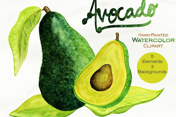 Avocado clipart watercolor. Graphic set illustrations creative