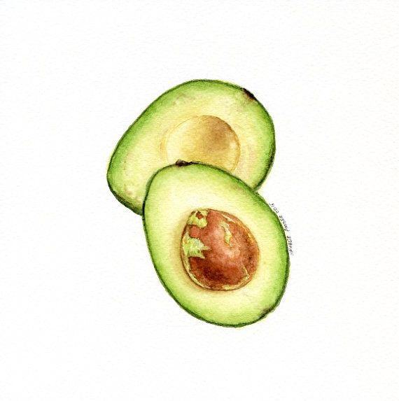Avocado clipart watercolor. Original painting watercolour wall