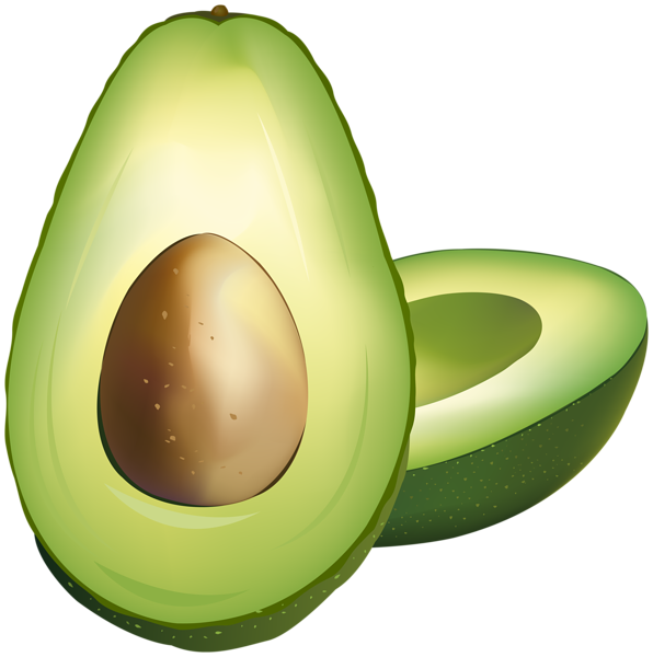 Png clip art gallery. Avocado clipart
