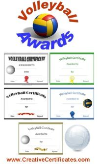 A variety of free. Awards clipart volleyball