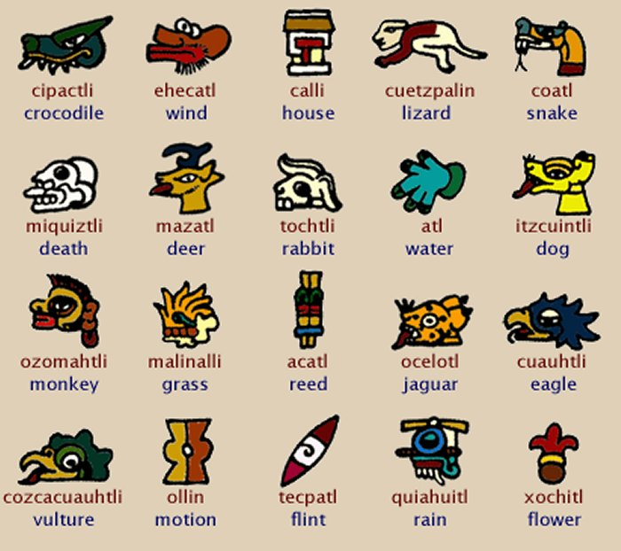 Ancient history of body. Aztec clipart animals