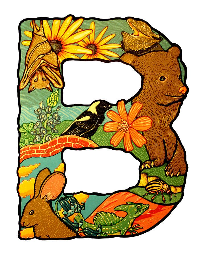 b clipart animal alphabet letter #25606640