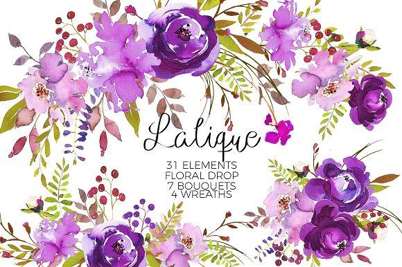 Watercolor graphic bundle illustrations. B clipart floral