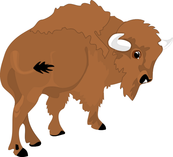 Free buffalo page of. Bison clipart american bison