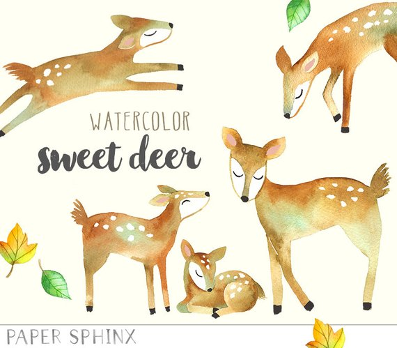 Babies clipart fawn. Watercolor deer mommy and
