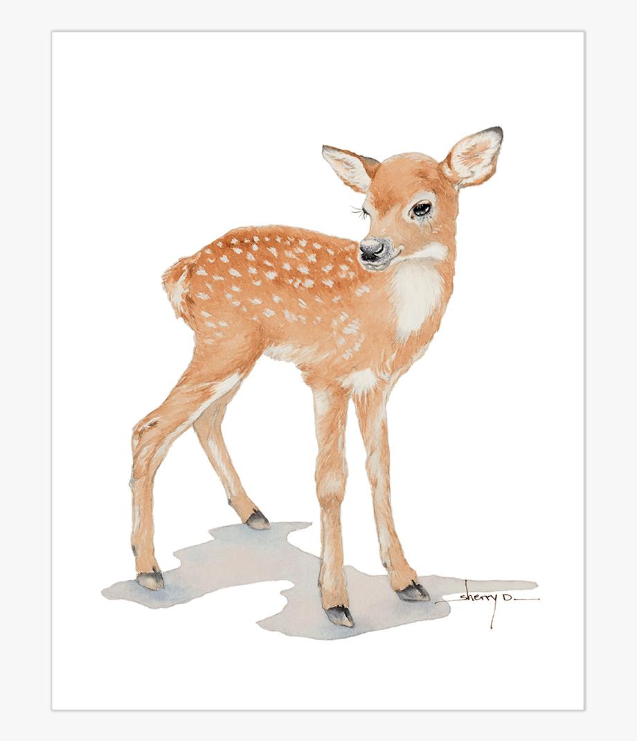 Popular wall art fawn. Deer clipart baby deer