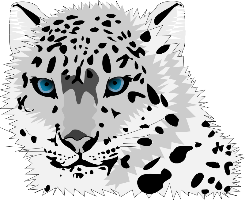 Free clipart snow. Baby leopard pencil and