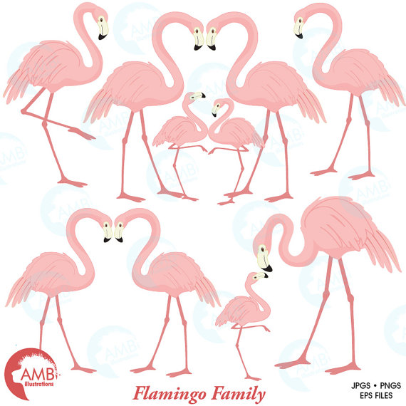 Flamingo pink ilxn. Baby clipart family