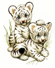 Baby clipart snow leopard. I am in love