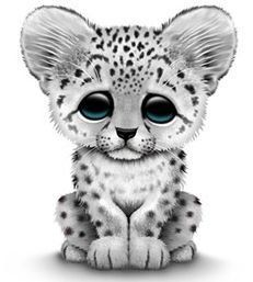 Free cliparts download clip. Baby clipart snow leopard