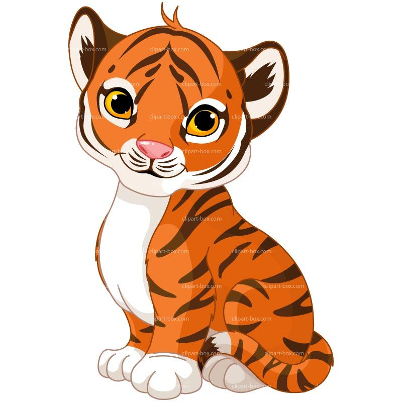Tiger royalty free vector. Baby clipart tigers