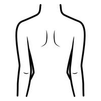 Free cliparts download clip. Back clipart body back