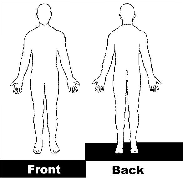 Back clipart body back. Outline template free sample