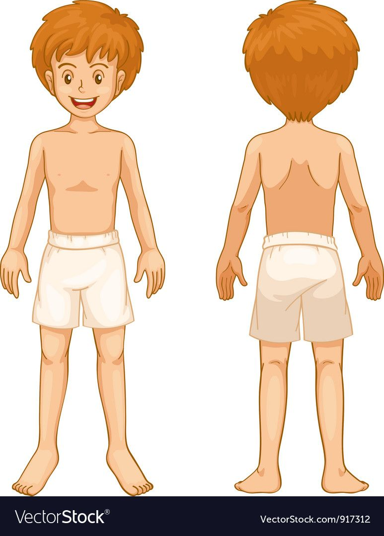 Body clipart boy's. Pin on