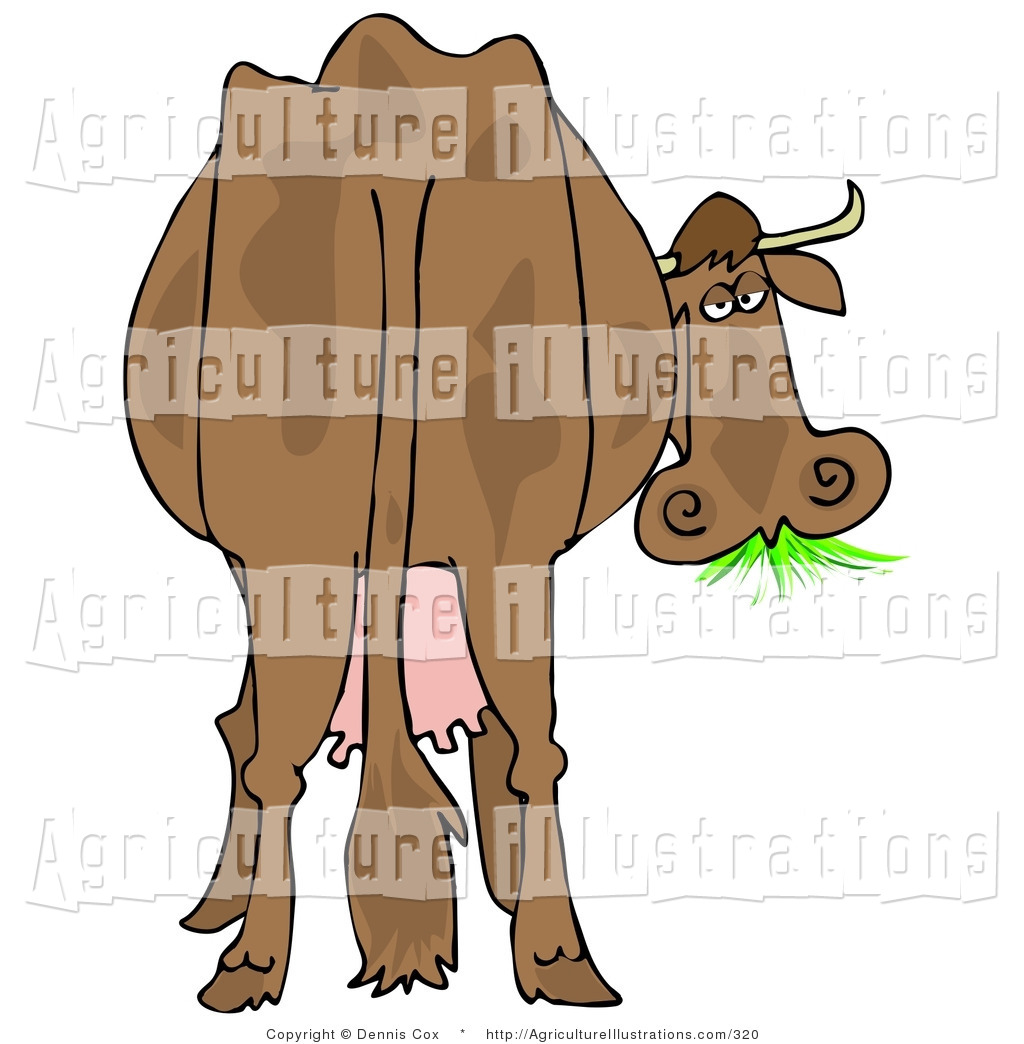 Royalty free stock agriculture. Back clipart cow