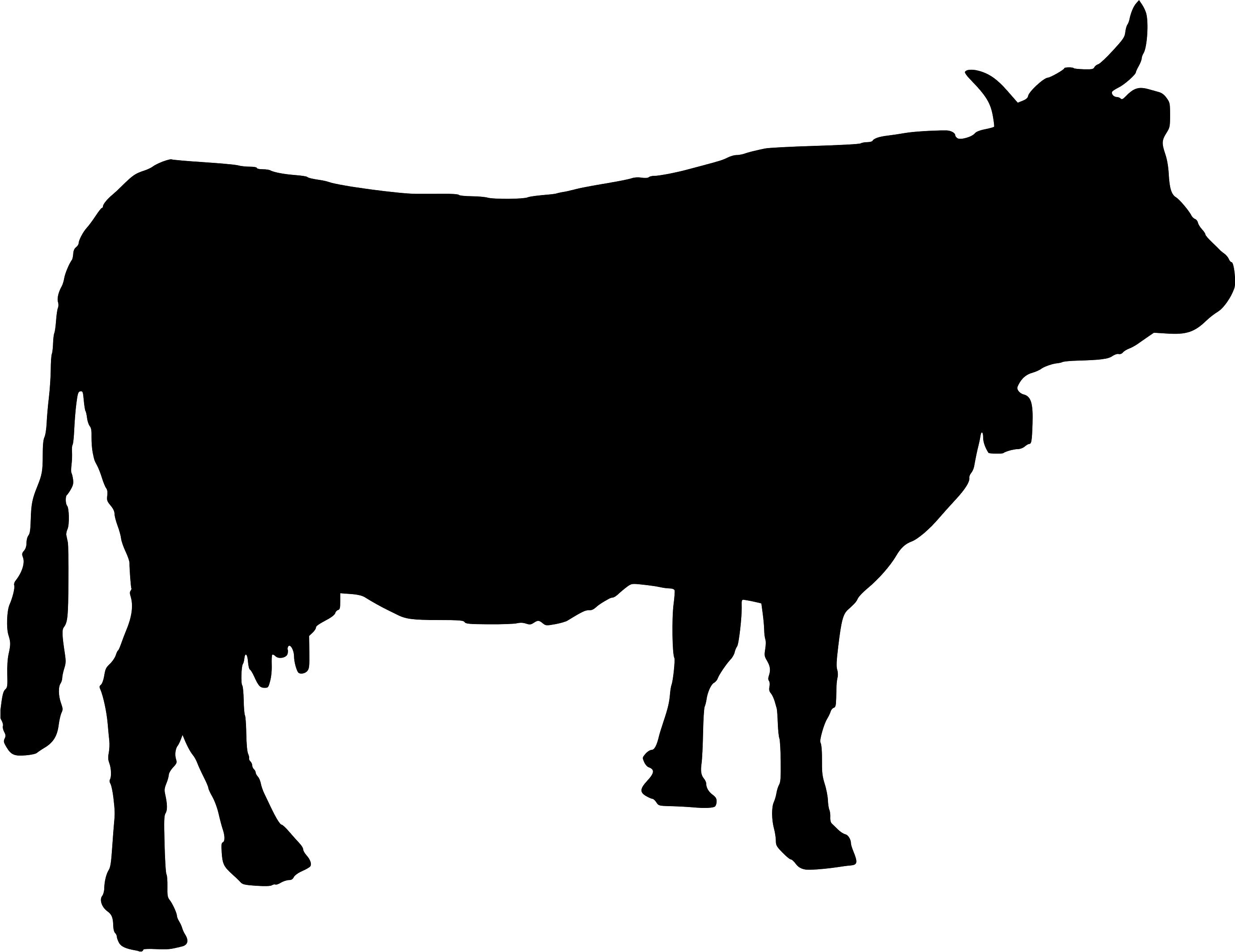Back clipart cow. Gt gallery for hereford