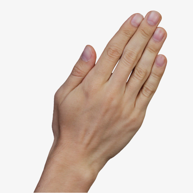 Back clipart hand. The of finger png